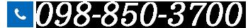 H1Rentacar 098-850-3700